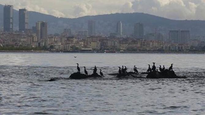 Bilinmeyen yönleriyle İstanbul Adaları galerisi resim 26