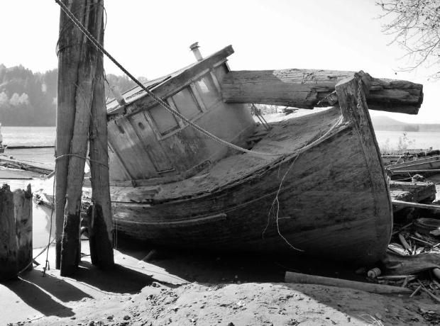 Çürümeye terk edilen görkemli gemiler galerisi resim 41