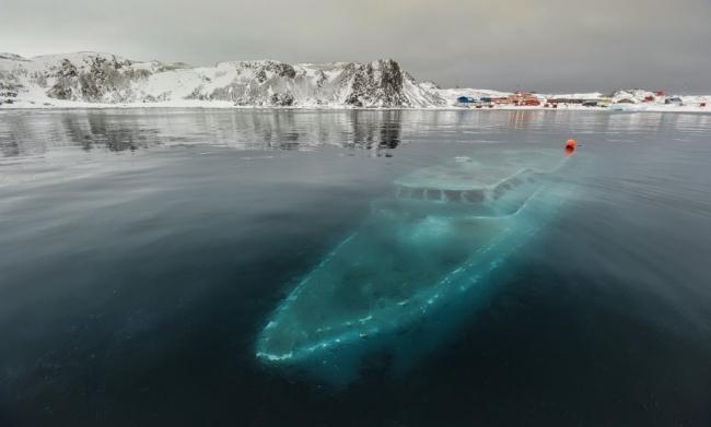 Okyanusların dibindeki en ilginç 20 şey galerisi resim 10