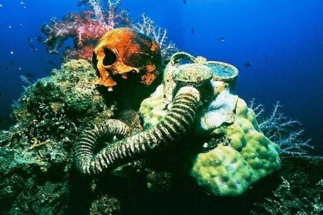Okyanusların dibindeki en ilginç 20 şey galerisi resim 18