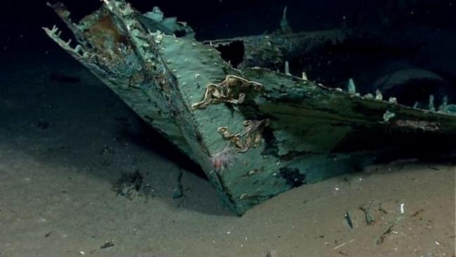 Okyanusların dibindeki en ilginç 20 şey galerisi resim 8