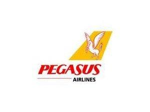 Pegasus Havayolları, personel biletlerine zam yaptı