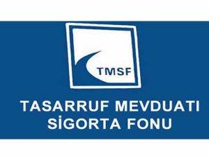 TMSF, bin 19 şirketin yöneticiliğini yapıyor