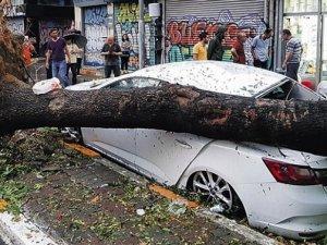 Araçların kasko oranı azaldı