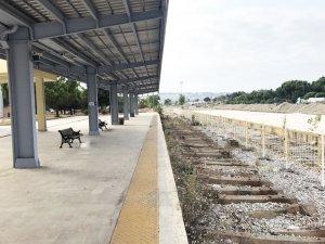 'Samsun-Sivas tren hattı yükümüzü taşıyacak'