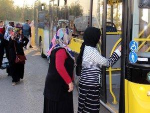 Ücretsiz seyahat için işletmelere 373 milyon lira destek sağlandı