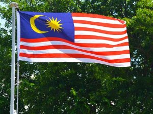 Malezya'da 71 binden fazla araçta hatalı hava yastığı tespit edildi