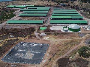 Cezaevinde kurulan biyogaz tesisi 1.5 milyon liralık tasarruf sağlayacak