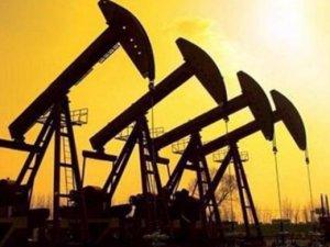 WTI türü petrol 3.5 yılın zirvesinde