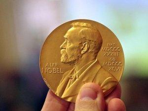 İklim değişikliği çalışması Nobel Ekonomi Ödülü getirdi