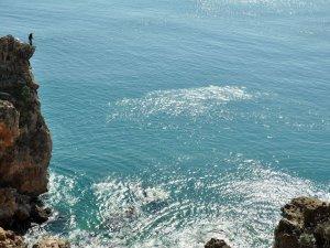 2.5 ton atığın Denize karışması önlendi