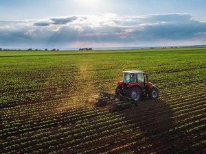 Tarım ÜFE Aralık 2018'de arttı!