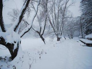 Kar yağışı Doğu Anadoluluların yüzünü güldürdü