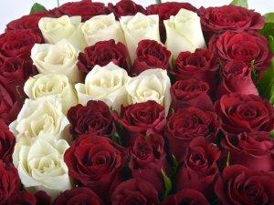 Sevgililer Gününün hedefi 3.5 milyon gül satışı!