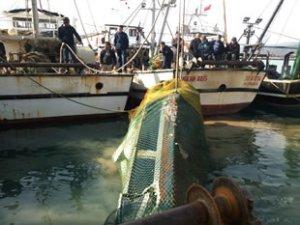 Mersinli balıkçıların ağına sürat teknesi takıldı
