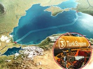 Rusya, 'TürkAkım 2 Projesi'ni gündemine aldı