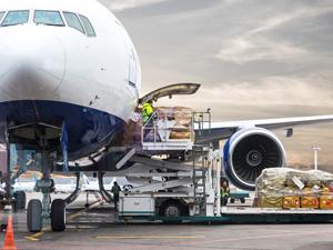 Lima Lojistik, Limaxgoo ile Avrupa ülkelerine dış ticareti havalandıracak