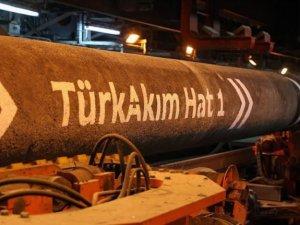 Moldova TürkAkım'dan gaz almak istiyor