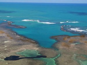 Brezilya sahillerini 'Bouboulina' isimli Yunan petrol tankeri kirletmiş