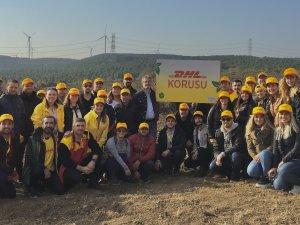DHL, İstanbul'da 2.500 ağaçlık bir koru oluşturuyor
