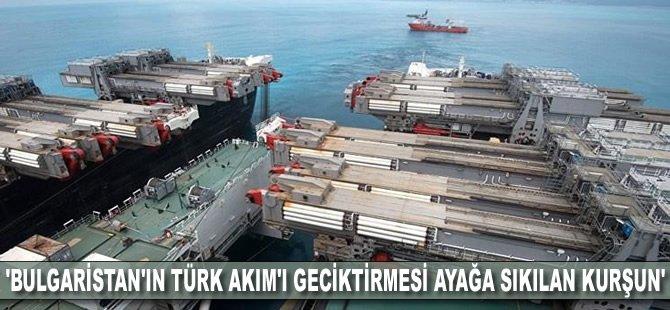 'Bulgaristan'ın Türk Akım'ı geciktirmesi ayağa sıkılan kurşun'