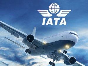 IATA, havayolları 2020 kar beklentisini açıkladı