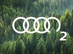 Audi, İzmir'in dağlarını yeniden yeşillendiriyor