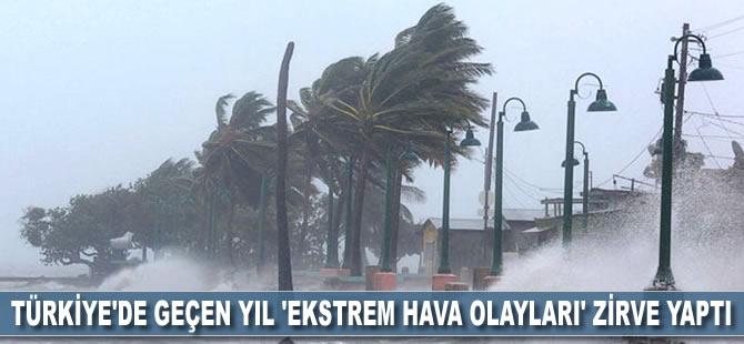 Türkiye'de geçen yıl 'ekstrem hava olayları' zirve yaptı