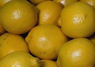 Temmuz ayı zam şampiyonu limon oldu