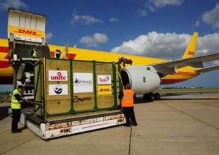DHL, Boeing 757'yi modifiye etti