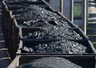 En kârlı kömür sahası özelleşecek