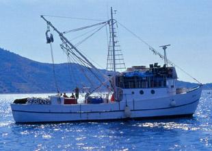 Ordu'da balık avcılarına 24 metre denetimi