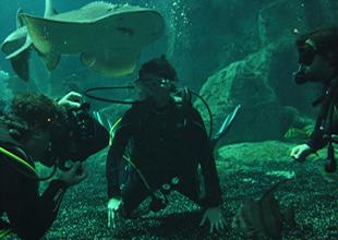 Akvaryumun ilk misafiri Deniz Akkaya oldu