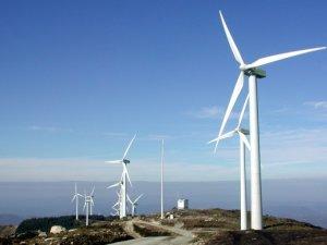 Çin'in yenilenebilir enerji devi küresel imparatorluk kuruyor