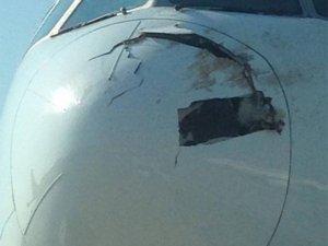 Singapur uçağına kuş çarptı