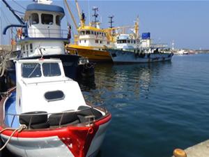 Samsun'da 3 bin 617 ruhsatlı balıkçı ve 470 balıkçı teknesi av sezonunu bekliyor