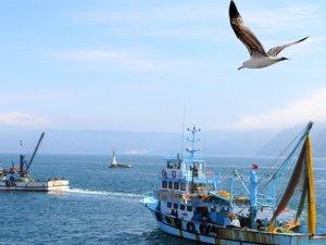 İstanbul'da balıkçıların hedefi 50 bin ton balık