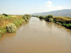 Büyük Menderes'ten zehir akıyor