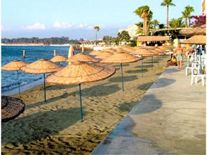 Hatay Büyükşehir Belediyesi'nin hedefi temiz sahil, mavi bir deniz