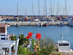 Seferihisar - Samos arası haftada 4 sefer