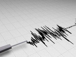 Rize'de 3.1 büyüklüğünde deprem