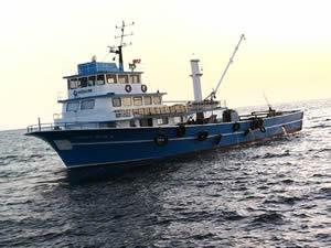 Karadenizli balıkçılar Eylül ayında hayal kırıklığı yaşadı