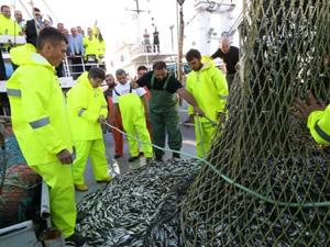 Başbaban Davutoğlu, denizden 80 kasa istavritle döndü
