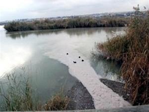 Mogan Gölü 2016 yılında tertemiz olacak