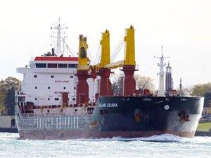 M/V ZEALAND JULIANA isimli kuruyük gemisi, Kolin Şirketler Grubu'na satıldı