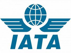 IATA: Global hava kargo taşımacılığı talebi düşüşte