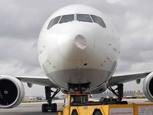 Kuşa çarpan THY uçağı İstanbul'a geri döndü