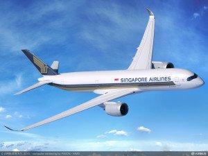 Singapur Havayolları'na ait yolcu uçağına kuş çarptı