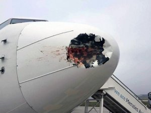 İnişte kuşa çarpan uçağın radomu çöktü