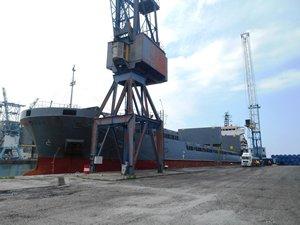 Hopaport 'a TANAP için 16 gemi ile 2 bin 603 boru taşındı